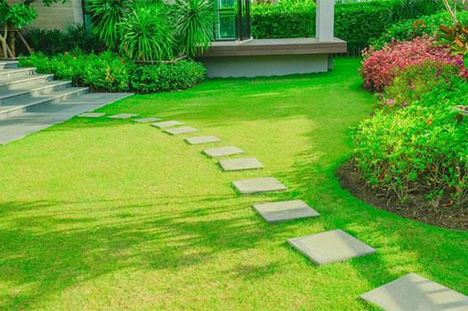 Landscape & Lawn